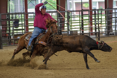 June 17, 2015-Team Roping School-8627