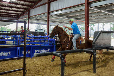 June 17, 2015-Team Roping School-8577