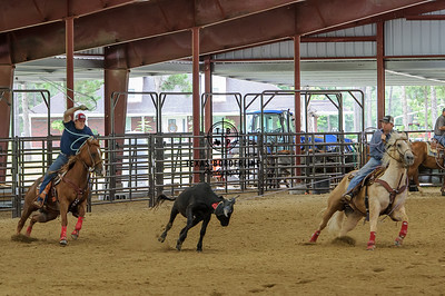 June 17, 2015-Team Roping School-8637
