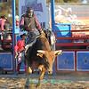 Boorowa Stampede Rodeo 2014
