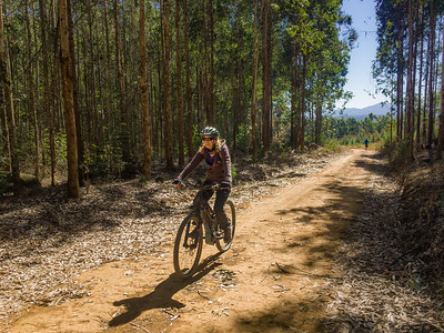 Riding in the forests in the Karkloof near Howick in KwaZulu Natal. South Africa.