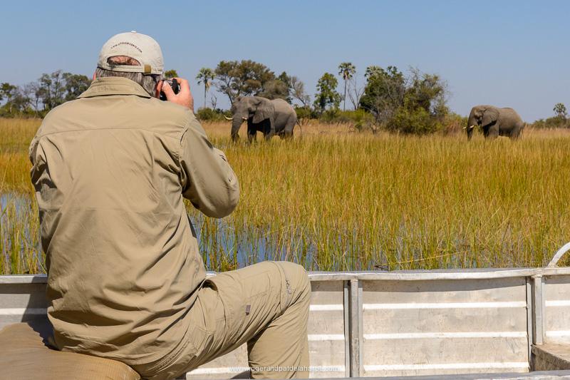 Photographing elephant bulls from a boat in the Okavango Delta, Botswana.