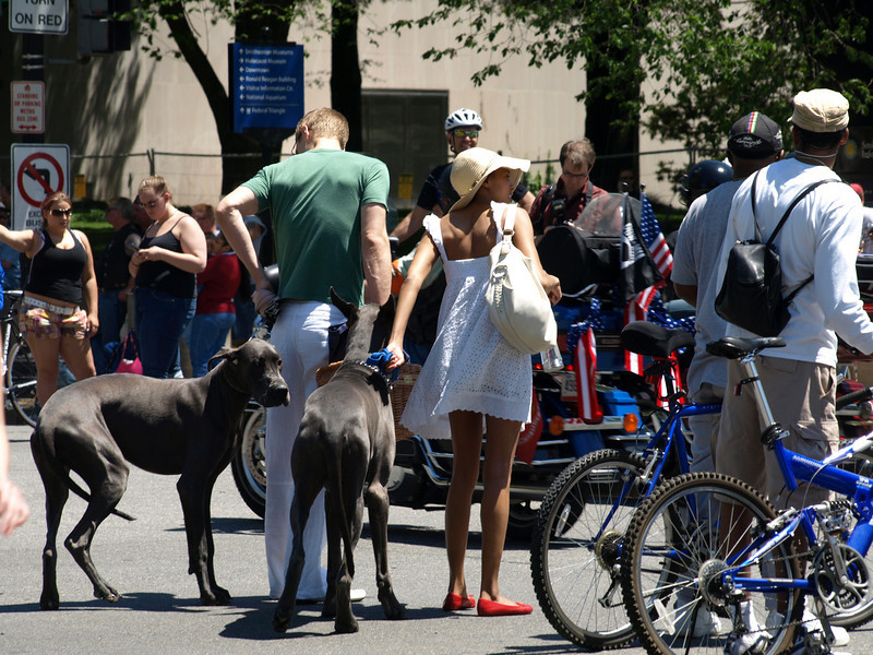 Rolling Thunder Motorcycle Rally, Washington, DC, May 25, 2008. A couple and their dogs watch the riders.