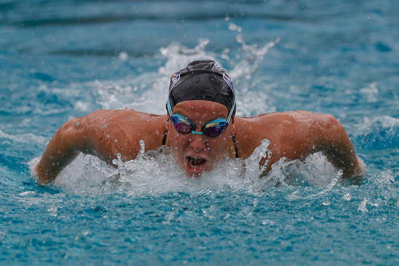 NCAA Swimming: Lynn at Rollins