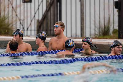 NCAA Swimming: SCAD at Rollins