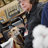 Joanne Tunnessen, of Leominster, is joined by Pets & People Therapy Dog Rolo while she listens to Secretary of Veterans Affairs Francisco Urena while he speaks at the Leominster Veteran's Center on Wednesday afternoon. SENTINEL & ENTERPRISE / Ashley Green