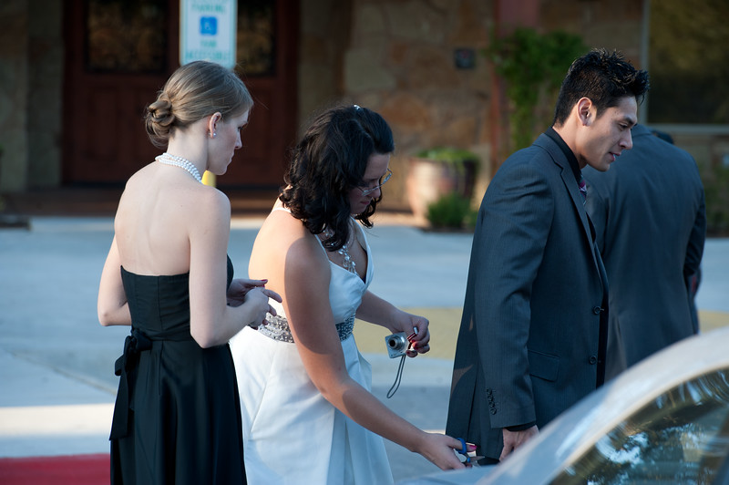 BrownWedding_10_04039
