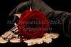 Red rose with handgun