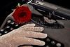 Red rose on typewriter