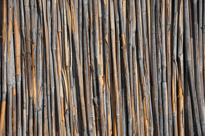 Bamboo Wall at the Village Museum. 2017.