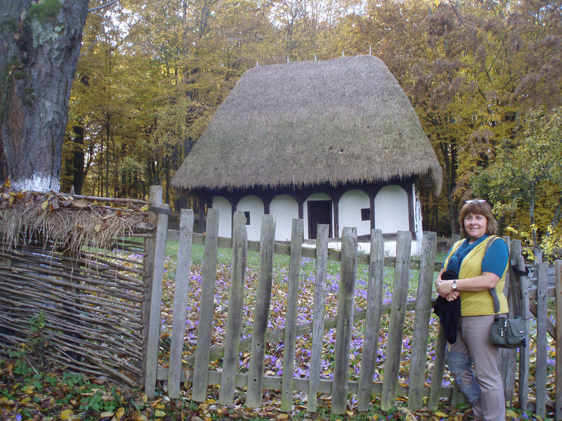 Another traditional house in the folk village.