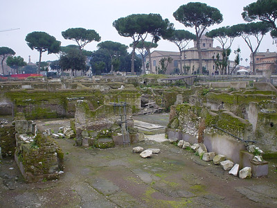 Ruins of the Foro Traiano (2)