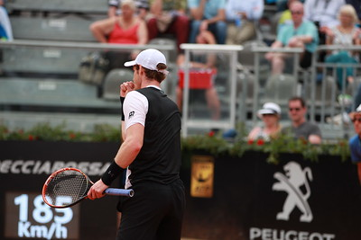 Andy Murray (57)