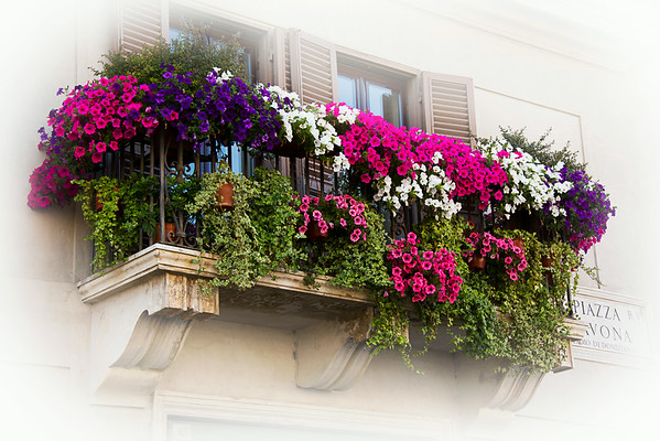 Floral balcony, Piazza Navona, Rome