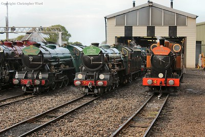 Nos. 3, 7 & 4 line up in the yard