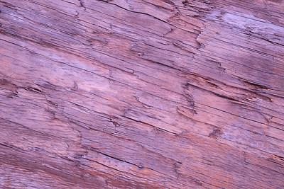 Dusky Driftwood