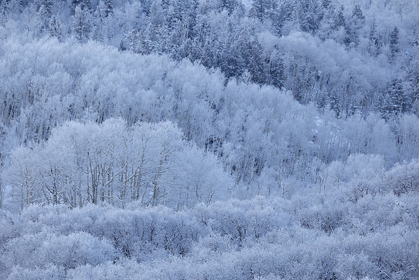 Frosted Layers