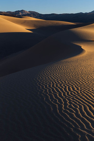 Dune Curves