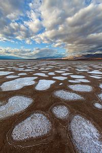 Salt Circles