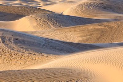 Rainy Dunes