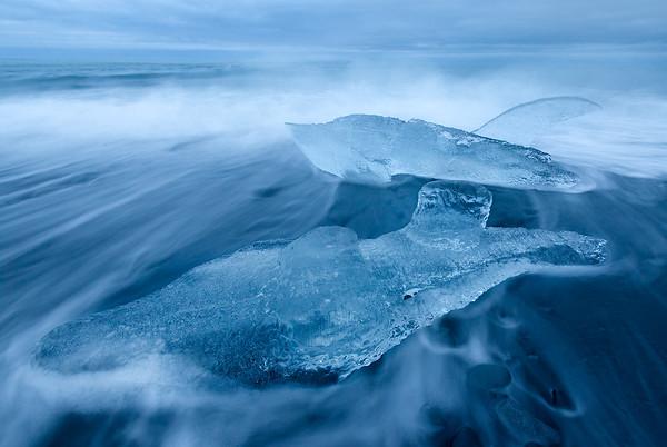 Ice Dolphin