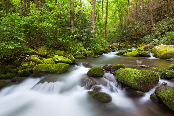 Spring Creek I