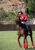 Lakeside Polo Hering Cup-29716