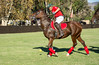 Lakeside Polo Hering Cup-29723