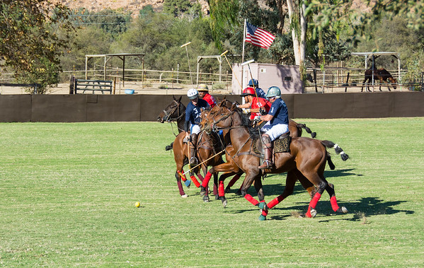Lakeside Polo Hering Cup-29630