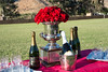 Lakeside Polo Hering Cup-29745