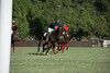 Lakeside Polo Hering Cup-29687