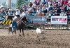 Lakeside Rodeo 2012_2061