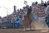 Lakeside Rodeo 2012_2269