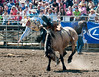 Lakeside Rodeo 2012_2104