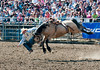 Lakeside Rodeo 2012_2105