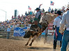 Lakeside Rodeo 2012_2108