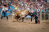 Lakeside Rodeo 2012_2210