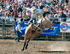 Lakeside Rodeo 2012_2102