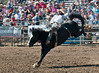 Lakeside Rodeo 2012_2021