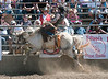 Lakeside_Rodeo_2011-6513