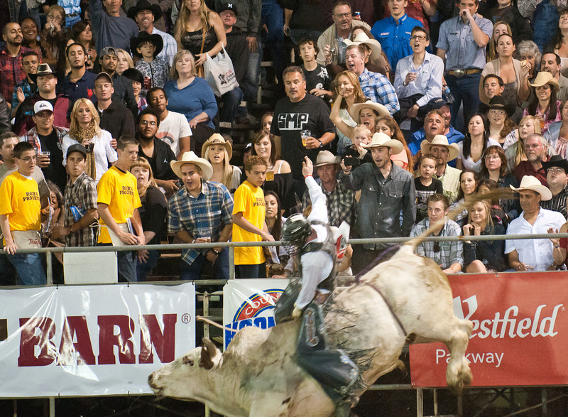 Lakeside_Rodeo_2011-6027
