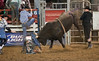 Lakeside_Rodeo_2011-6069