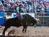 Lakeside_Rodeo_2011-6615