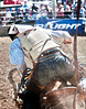 Lakeside_Rodeo_2011-6498