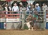 Lakeside_Rodeo_2011-6002