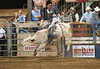 Lakeside_Rodeo_2011-6021