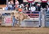 Lakeside_Rodeo_2011-6231