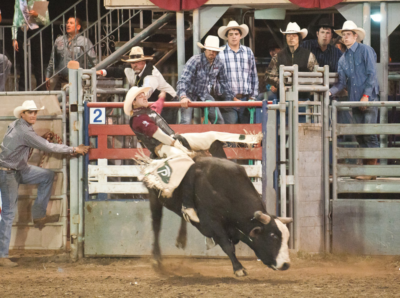 Lakeside_Rodeo_2011-6180