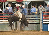 Lakeside_Rodeo_2011-6177