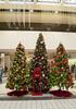 Parkway Plaza Christmas 2016-6947